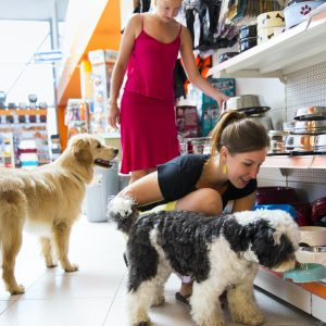 Retail revitalisation has Pets at Home sales purring