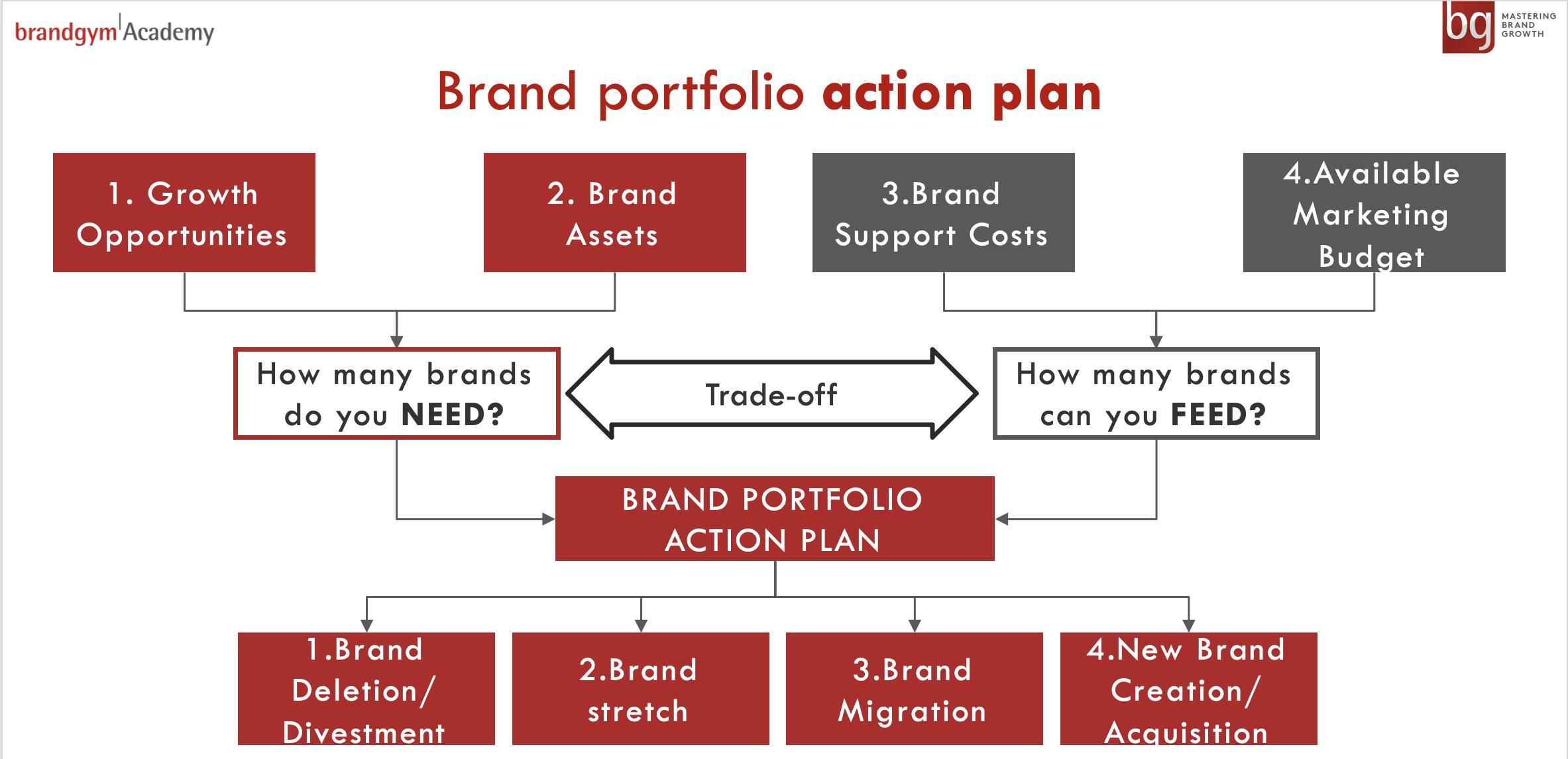 Brandgym Academy Brand Portfolio Model